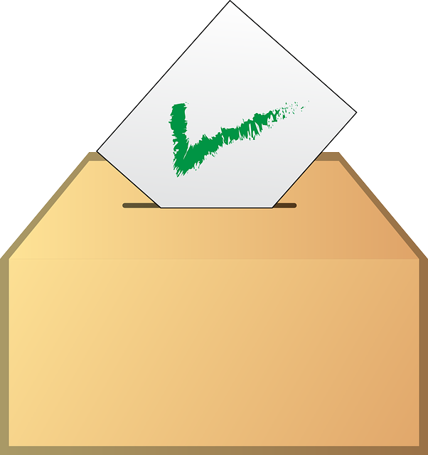 Image of ballot box